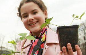Специалисты посадят более 3,5 тысяч растений в центре города. Фото: Наталия Нечаева, «Вечерняя Москва»