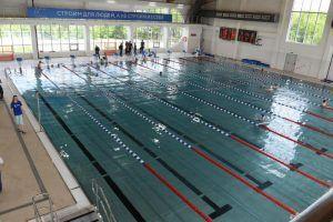 Соревнования по плаванию проведут сотрудники районного спорткомплекса. Фото: Владимир Новиков, «Вечерняя Москва»