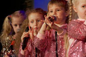 Концерт «Зимние сказки» проведут в Доме культуры «Стимул». Фото предоставлено пресс-службой ДК «Стимул»