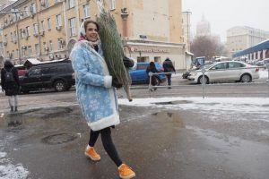 Более 60 елок собрали на утилизацию в районе. Фото: Антон Гердо, «Вечерняя Москва»