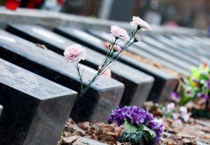 Столичные кладбища ограничат доступ посетителей на период самоизоляции. Фото: сайт мэра Москвы
