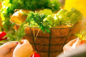 Эксперты рассказали об основах правильного питания. Фото: сайт мэра Москвы