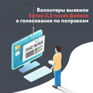 Добровольцы Общественной палаты выявили около 2,5 тысячи фейковых новостей о голосовании по поправкам в Конституцию РФ
