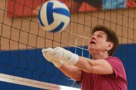 Кубок Центрального округа по волейболу разыграют в районе. Фото: Наталия Нечаева, «Вечерняя Москва»