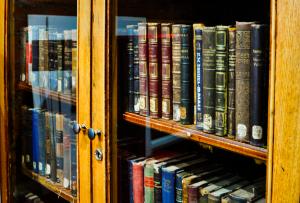 Онлайн-лекция о литературе состоится в библиотеке имени Маргариты Рудомино. Фото: Никита Нестеров