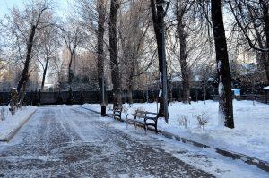 Новый выпуск программы опубликовали в социальных сетях парка «Таганский». Фото: Анна Быкова