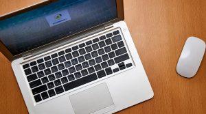 Заявление на участие в онлайн-выборах 17-19 сентября подали 150 тыс москвичей. Фото: сайт мэра Москвы