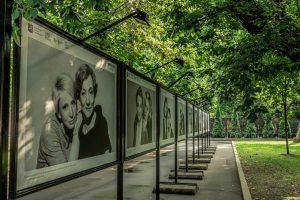 Фотовыставку открыли в Таганском парке. Фото с сайта парка